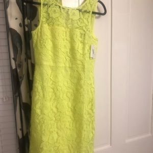 J. Crew Collection Lace Sheath Dress, size 6